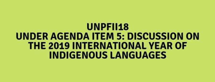 UNPFII18-Item5-696x265